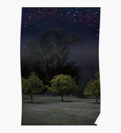 Moon Shadows Poster