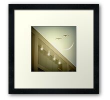 Morning lover  Framed Print