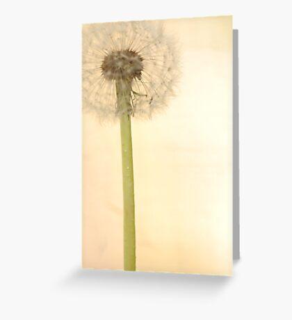 Fata Morgana Greeting Card