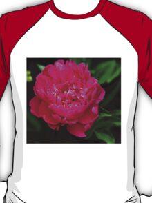 Showstopper T-Shirt