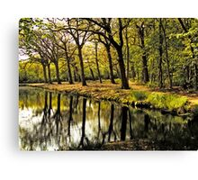 HDR Forest Canvas Print
