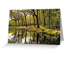 HDR Forest Greeting Card
