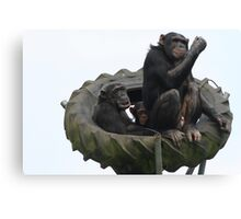 Chimp Family Canvas Print