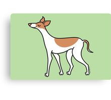 Proud Greyhound - brown and white Canvas Print