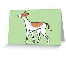 Proud Greyhound - brown and white Greeting Card