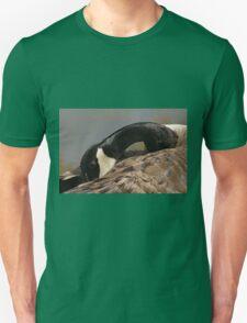 Canada goose, Mud Lake, Ottawa, Ontario Unisex T-Shirt