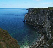 Bempton Cliffs by WatscapePhoto