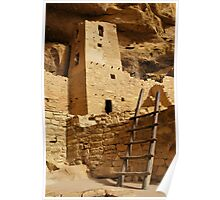 Cliff Palace Tower at Mesa Verde NHS Poster