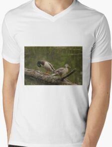 Waterfowl, Mud Lake, Ottawa, Ontario Mens V-Neck T-Shirt