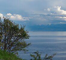 Blue Horizon by Jann Ashworth