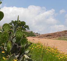 Trail to the Enchanted Rock by BrigitteinTexas
