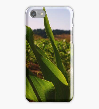 Curvy Corn iPhone Case/Skin