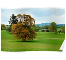 Escot Park ~ East Devon Poster