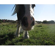 Whatcha Doin` Down There Then? Photographic Print