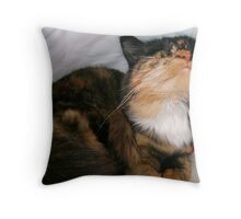 The Purrfect Place to Hide Throw Pillow
