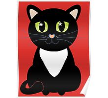 Only One Black and White Cat Poster