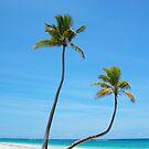 Bavaro Beach in Punta Cana, The Dominican Republic by Bruno Beach