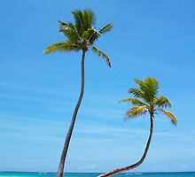 Bavaro Beach in Punta Cana, The Dominican Republic by Atanas Bozhikov NASKO