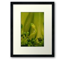 Broccoli Alien Framed Print