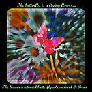 The Butterfly by Cathy O. Lewis