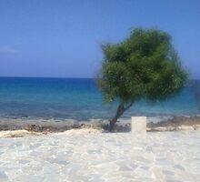 Lonely Tree by Ana-Maria Rolfe Nunes