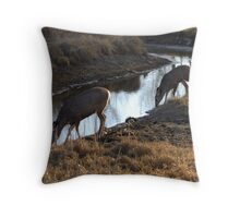 Evening drinks Throw Pillow