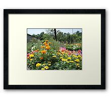 Spring at the Springfield Nursery Framed Print