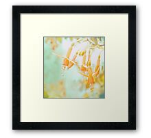 daydreams and summer memories 002 Framed Print
