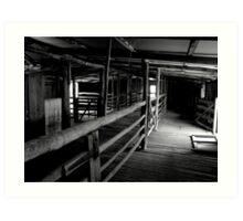 Shearing Shed Art Print