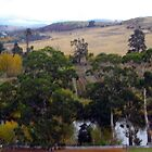 Autumn in the Derwent Valley Tasmania 2 by Beth Mills