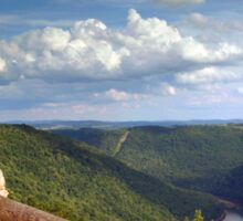 The View From Coopers Rock Sticker