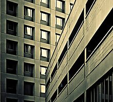 Highrise and lowrise (duotone) by graphicscapes