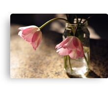 Tulips in the kitchen ii Canvas Print