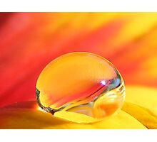 Beauty in a Drop Photographic Print