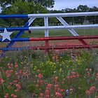 Proud Texan by BrigitteinTexas
