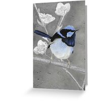 Blue Wren Pencil Drawing Gouache Painting Greeting Card