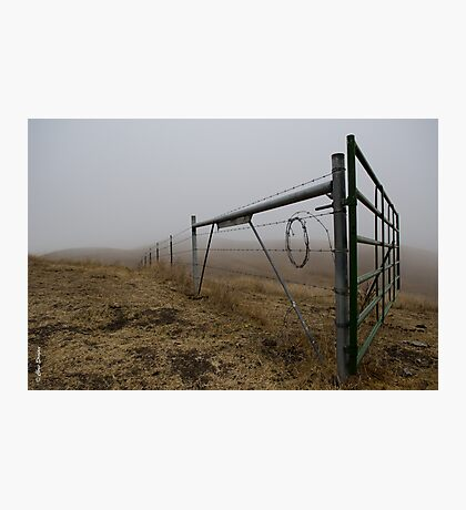 Barbed Wire Fog Photographic Print