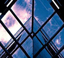 Skyscraper blues (duotone) by graphicscapes