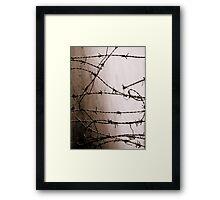 Looking Beyond Memory Framed Print