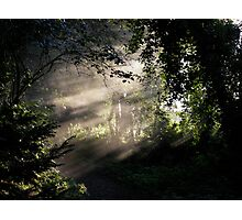 autumn - polstead Photographic Print