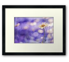 more bokeh than you can shake a flower at Framed Print