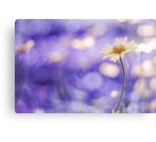 more bokeh than you can shake a flower at Canvas Print