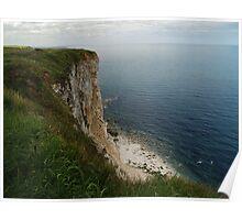 Bempton Cliffs Poster