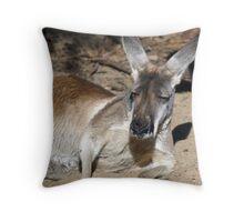 Perth Zoo - Western Australia Throw Pillow