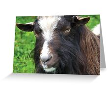 Bagot Goat Greeting Card