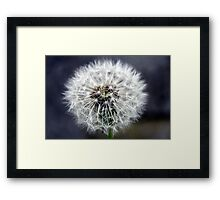 Parachute Ball  Framed Print