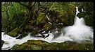 Mother Cummings River Bend by Robert Mullner