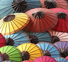 Umbrellas by Romina .