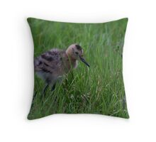 Black-tailed Godwit Chick Throw Pillow