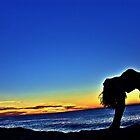 USHTRASANA @ SUNRISE Bronte Beach  by Leonie Naronah